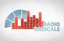 Intervista a giuseppe lauricella sulla riforma della legge for Diretta radio radicale
