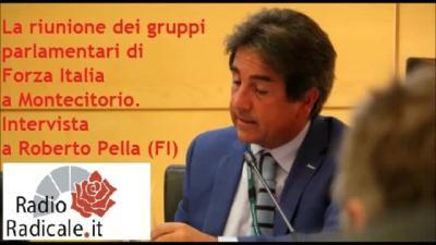 Politiche 2018 la riunione dei gruppi parlamentari di for Deputati di forza italia