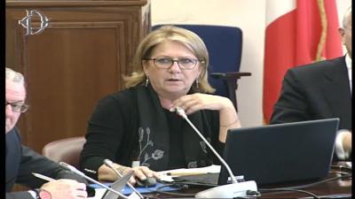 Commissione Finanze Della Camera Dei Deputati 6032019